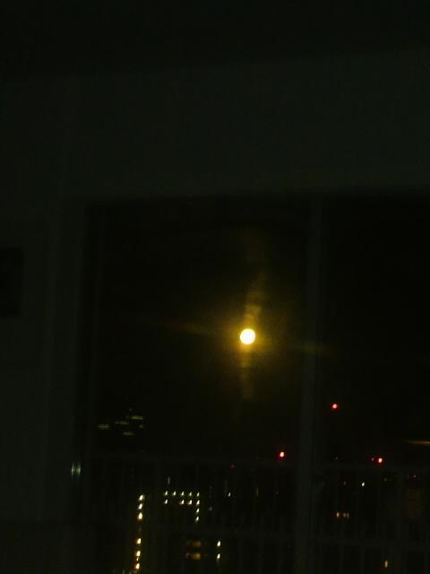 満月の夜.jpg